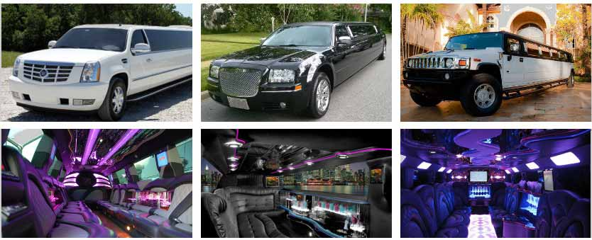 wedding transportation party bus rental mcallen